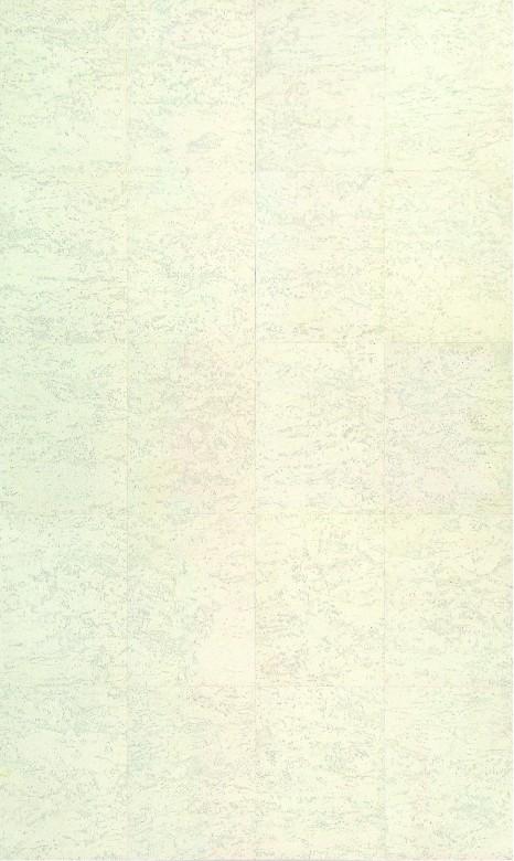 Slate Arctic - Wicanders Corkcomfort Color Classics Kork-Boden Klick