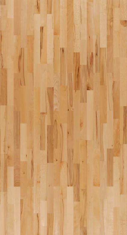 Buche Rustikal lackversiegelt matt - Parador Parkett Basic 11-5