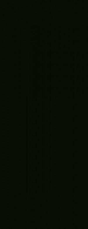 Black hochglanz - Wineo 550 Laminat