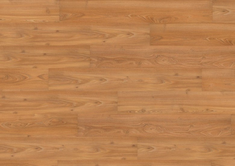 Acacia - Wineo 500 medium SP Laminat