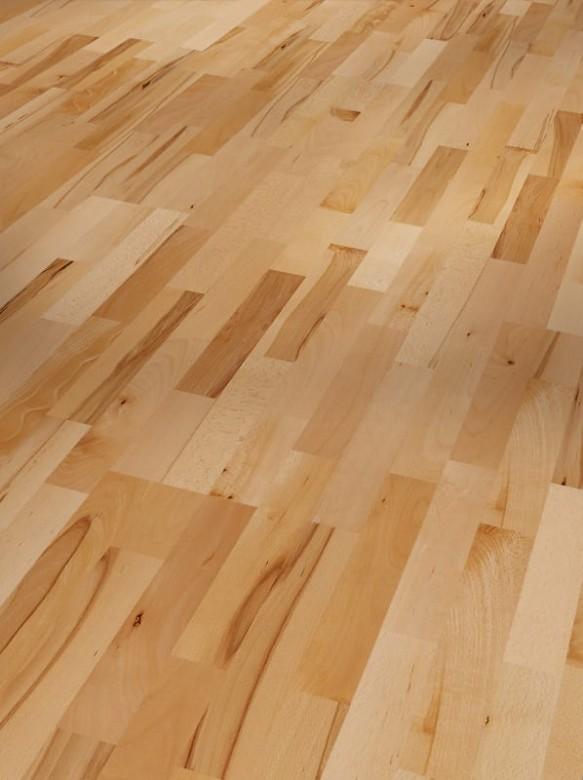 PARADOR Basic 11-5 - Buche - Rustikal lackversiegelt matt - 1518246