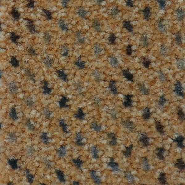 Infloor Caprice Fb. 250 - Teppichboden Infloor Caprice