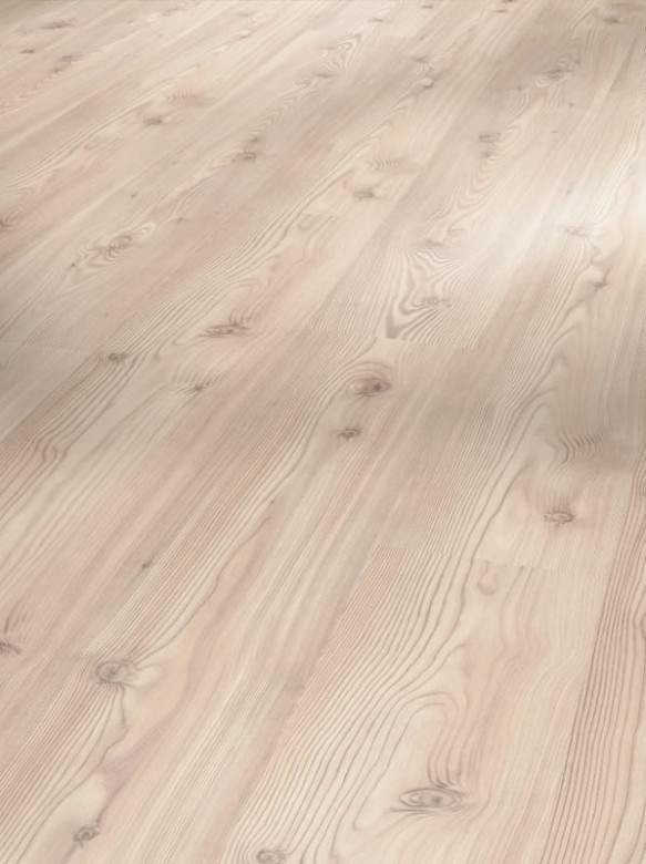 PARADOR Basic 400 - Baltic Pinie Holzstruktur - 1426510
