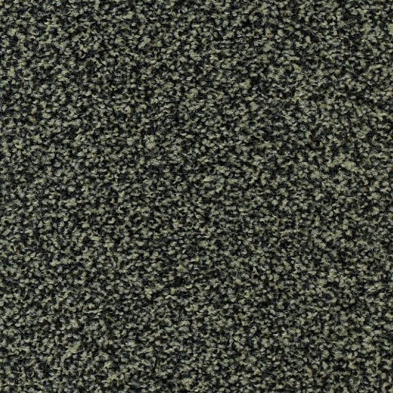 Frisea 5L21 - Teppichboden Vorwerk Frisea