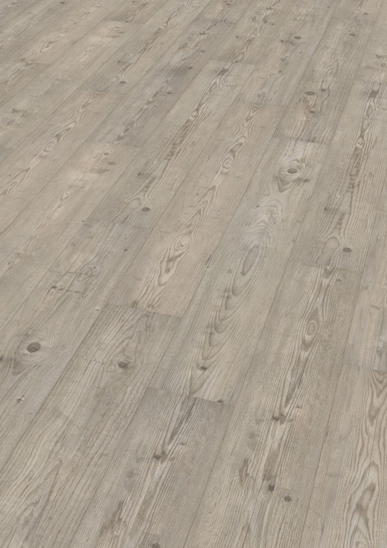 Ascona Pine Grey - Wineo 500 medium V2 Laminat