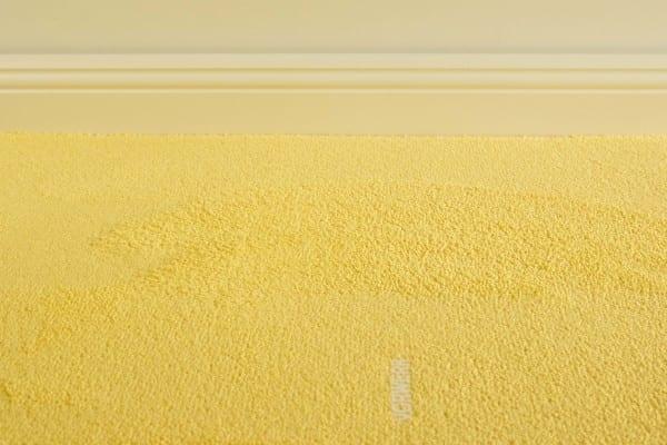 Vorwerk Myrana 2D79 - Teppichboden Vorwerk Myrana